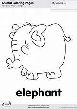 Coloring Elephant Supersimple Simple Super sketch template