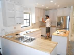 Domsjo Single Sink Cabinet by Diy Reddish Color Style Of Kitchen Cabinet Installation