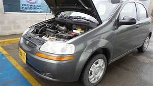 Chevrolet Aveo Family 2009