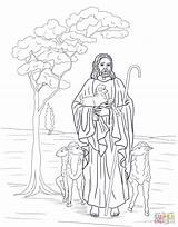 Shepherd Coloring Jesus Catholic Printable Bible Sheep Supercoloring Colouring Sheets Crafts Parables Lost Colour Lds Version Template 1249 14kb 1600px sketch template