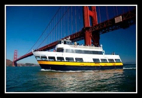 San Francisco Private Boat Tours by San Francisco Bay Cruises And Boat Tours Which Are The Best