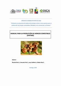 Manual Para La Producci U00f3n De Hongos Comestibles