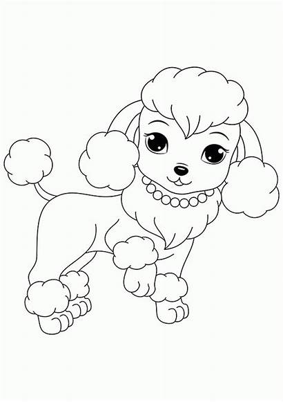 Coloring Pages Poodles Poodle Puppies Printable Dogs