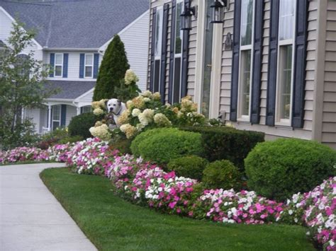 landscaping ideas  front yards  backyards planted