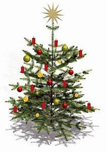 Geschmückter Weihnachtsbaum Fotos : mein geschm ckter weihnachtsbaum foto bild gratulation ~ Articles-book.com Haus und Dekorationen