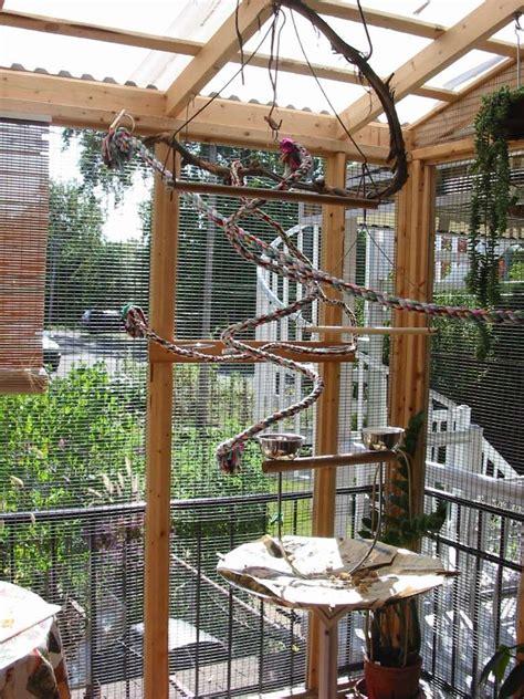 ma p tite cuisine forum perroquet com volière extérieure et voisins