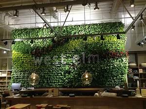 Living Walls – Los Angeles – Interior Plant Design Your