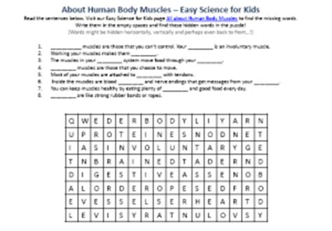 human muscles activity sheet for free printable