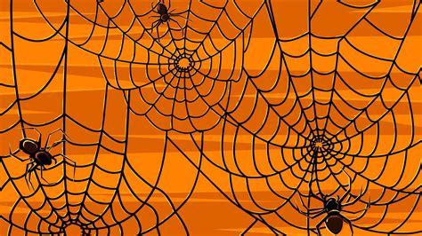 Halloween Spider Webs - Wallpaper #37575