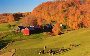 New England Fall Foliage Color