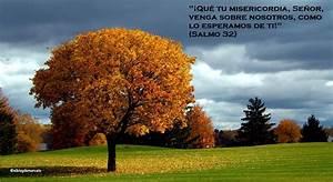 El Blog de Marcelo: ¡Regalo!: 20 paisajes de otoño, 20 ...