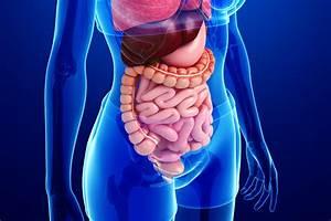 Gastrointestinal Services