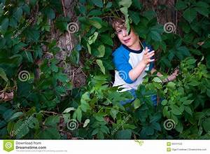 Scared Child In The Woods Stock Photo - Image: 60241522