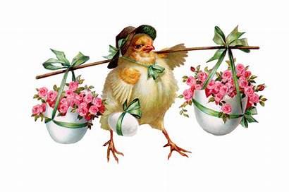 Easter Clip Bunny Chick Happy Copy Paste