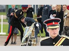 Prince Harry praises RAF for key antiterror preparations