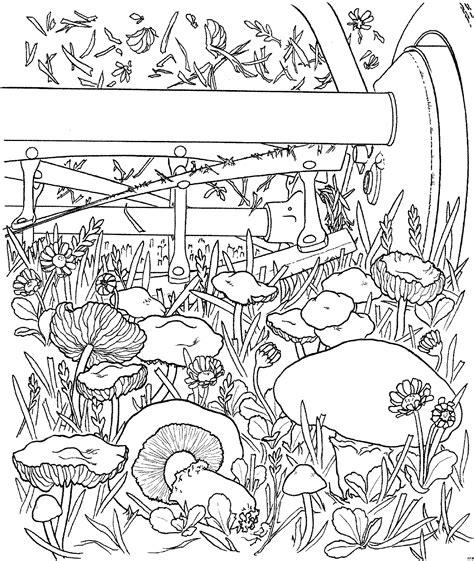 Pilze Im Garten Ausmalbild & Malvorlage (blumen