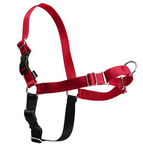 easy walk harness easy walk 174 harness by petsafe grp ewh