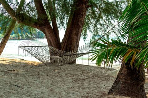 How To Assemble A Hammock by How To Make A Rope Hammock Hunker