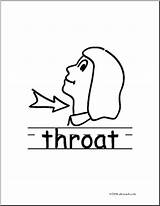 Throat Clipart Clip Basic Words Poster Clipground Abcteach sketch template