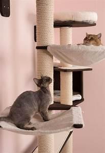 Kletterbaum Für Katzen : kletterbaum f r katzen zur wandmontage ~ Lizthompson.info Haus und Dekorationen