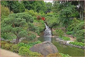 Immergrüne Sträucher Und Bäume : japanischer garten welche str ucher und b ume mein ~ Michelbontemps.com Haus und Dekorationen