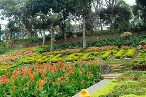 taman bunga keukenhof belanda   selecta sewa villa