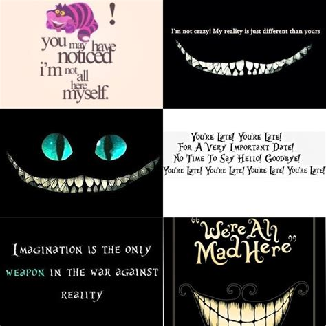Cheshire Cat From Alice In Wonderland Quotes Quotesgram
