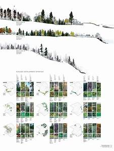 Very Cool Planting Ecology Diagrams  Point Pleasant Park  Halifax  North Design Office
