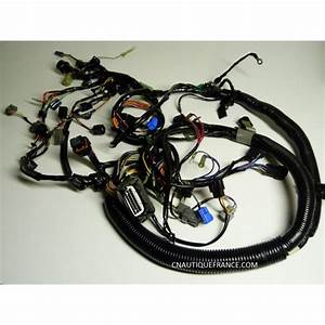 Wire Harness 150 - 200 Hp 2s Yamaha Hpdi