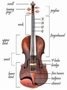 The Parts Of A Violin And How To Fix Them