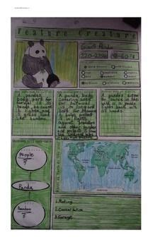images  deadly  teaching ideas  pinterest