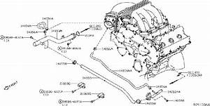 Nissan Pathfinder Engine Coolant Hose  Water  Piping  Hoses