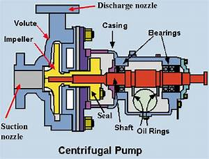 Centrifugal Pump Design And Applications