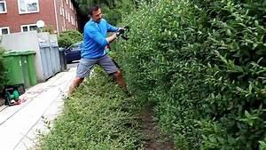 Hainbuche Baum Schneiden : heckeschneiden mit richtschnur newwonder555 youtube ~ Watch28wear.com Haus und Dekorationen