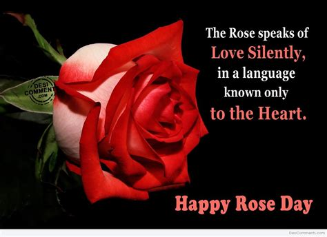 beautiful happy rose day  pictures
