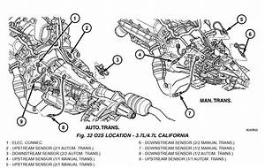Wiring Diagram 1996 Dodge Ram 1500 Engine