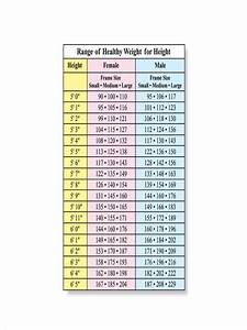 Free 7 Height And Weight Chart Examples Samples In Pdf