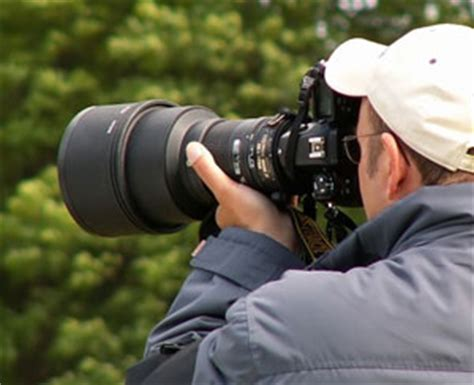 Wildlife Camera » Which Wildlife Camera  Dslr Or Superzoom?