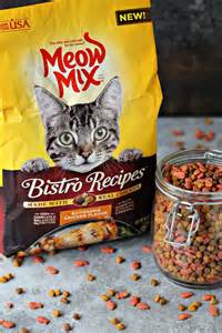mixing and cat food meow mix bistro and why i m a cat obsessed cravings of a