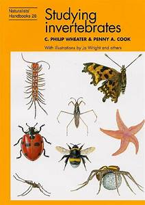 Studying Invertebrates  Charles Philip Wheater  Penny A