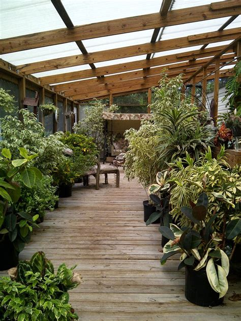 plants for sunroom 17 best images about sunrooms conservatories atriums on pinterest gardens the plant and