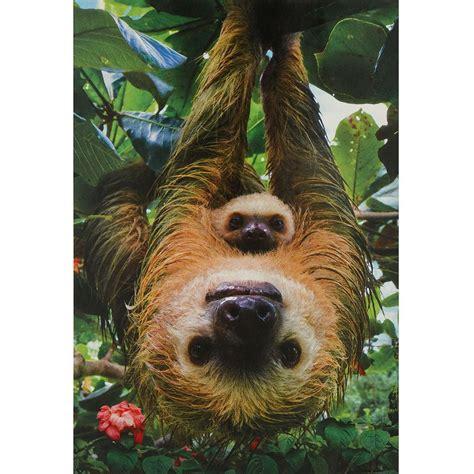 Sloths 250 Piece Puzzle