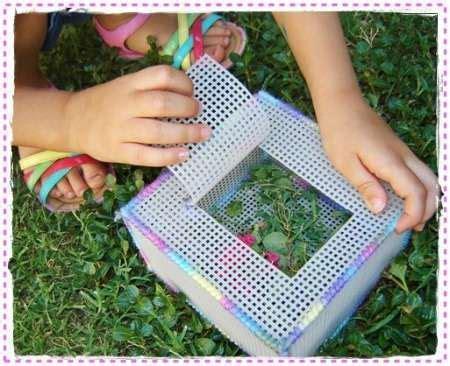 bug catcher lesson plans