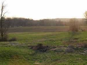 Bentley Farm Gazette: Sun Sets on a Tilled Field