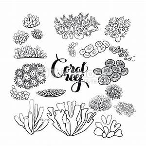 Collection Of Coral Reef Elements Vector Art | Thinkstock