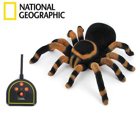 national geographic radio control tarantula toy crazy sales