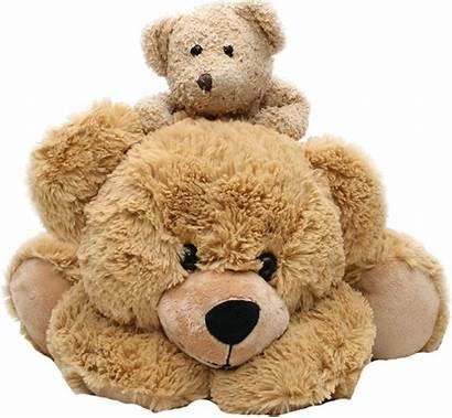 Teddy Bear Bears Toys Stuffed Plush Cuddly