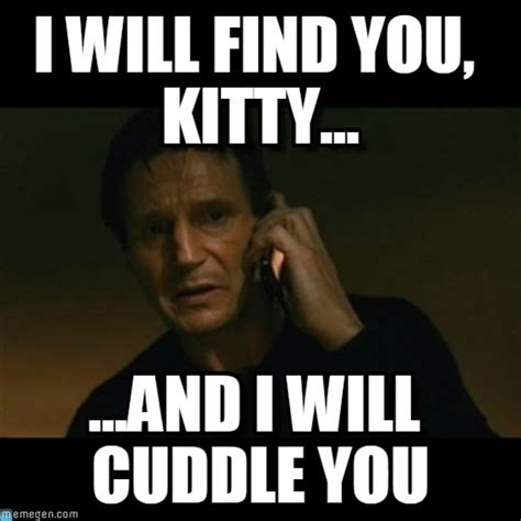 Find Meme - i will find you kitty liam neeson taken meme on memegen
