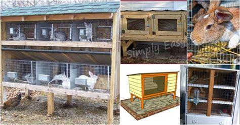 diy rabbit hutch plans   raising bunnies