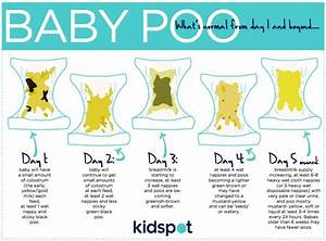 Newborn Poop Chart - 183 best images about poop on ...